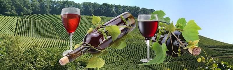 Vino Español : Denominación de Origen
