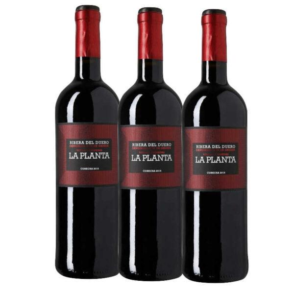 vino La Planta de Arzuaga Ribera del Duero 3 botellas